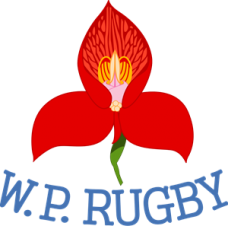 Logo_Western_Province_Rugby_svg4f32